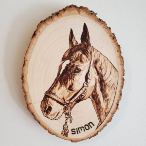 Simon the horse